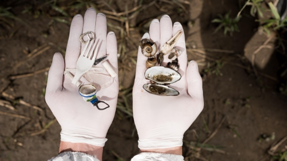 Qué son los microplásticos y cómo afectan a nuestra salud